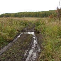 Лесная дорога, Горячегорск