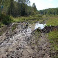Путь в тайгу, Горячегорск
