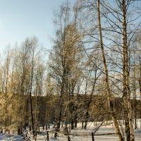 2013-01-07 - 019  (D5100+18-200mm) (Saripovo) (GoryaceGorsk), Горячегорск