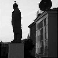 Lenin & bird :), Дудинка
