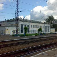 Железнодорожная станция Заозерная_Railway station Zaozernaja, Заозерный