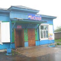 Магазин Василий, Иланский
