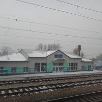 Станция Козулька, Козулька