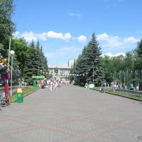 Avenue in the central park of Krasnoyarsk, Красноярск