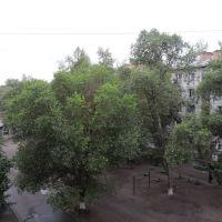Двор, Минусинск