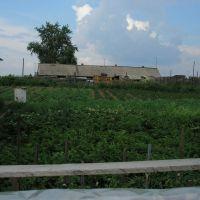 огород, Мотыгино