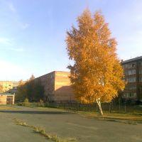 Осень в городе, Назарово