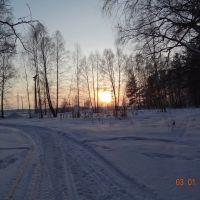 В роще _2012/01/03_, Назарово