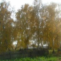 Вид с огорода у тетушки., Нижний Ингаш