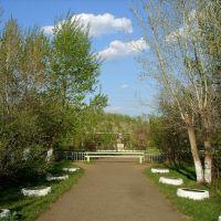 ограда корпуса №2 Новоселовской СОШ №5, Новоселово