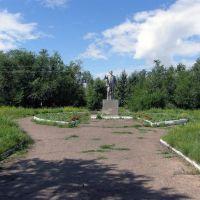 парк Ленина, Новоселово