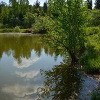 Дачное озеро, Партизанское