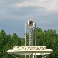 Krasnoyarsk-45 (Zelenogorsk), Партизанское