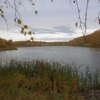 пруд Бабыч, Партизанское