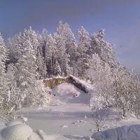 Зимний пейзаж, Партизанское