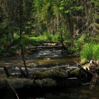 Ручей, впадающий в р. Лендаха, Северо-Енисейский