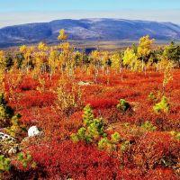 Осенние краски Енашимского Полкана ( The fall colors of Enashimskiy Polkan), Северо-Енисейский