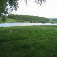 Small lake near Uyar town, Уяр