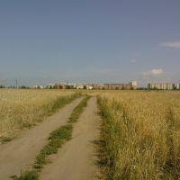 Дорога с Есауловки, Сосновоборск