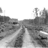 Дорога на въезде в Кодинск (1978 год), Кодинск