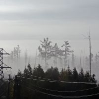 Утро (Кодинск), Кодинск