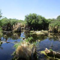 Болото (swamp), Глядянское