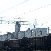 Элеватор, Глядянское