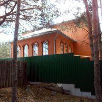 Особняк в лесу(вид сзади), Кетово