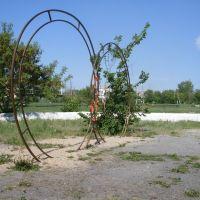 Кольца (Rings), Макушино