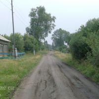 Ленина, Шатрово
