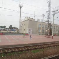 Станция Шумиха, Шумиха