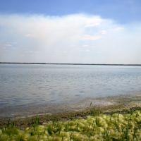 Озеро Нифановское, Щучье