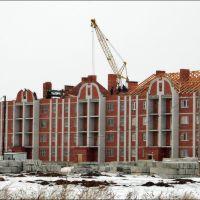 Архитектурные излишества в процессе постройки, Щучье
