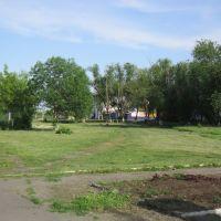 Парк, Щучье