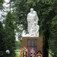 Памятник солдатам в парке п.Глушково, Глушково