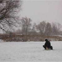 Одинокий рыбак. Рядом с островком в парке., Глушково
