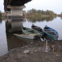 Под мостом, Глушково