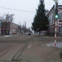 Lenin Street, Дмитриев-Льговский