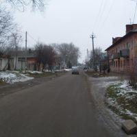 Volodarskii street, Дмитриев-Льговский