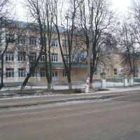 School № 1, Дмитриев-Льговский