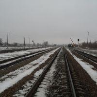 to Bryansk, Дмитриев-Льговский