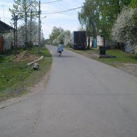street Patio, Дмитриев-Льговский