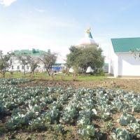Женский монастырь во имя преподобного Алексия человека Божия (1998 г.), Золотухино