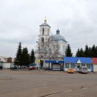 Касторное. Церковь Успения Пресвятой Богородицы, Касторное