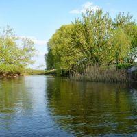 Иногда река становилась обманчиво широкой и свободной, Касторное
