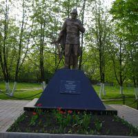 Памятник, Конышевка