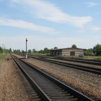 Станция Конышевка Моск. ЖД, Конышевка
