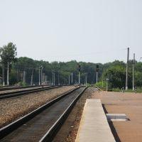 Станция Конышевка, Конышевка