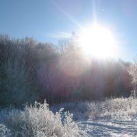Новогоднее солнышко январь 2011, Конышевка