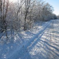 Зимняя дорожка Январь 2011, Конышевка